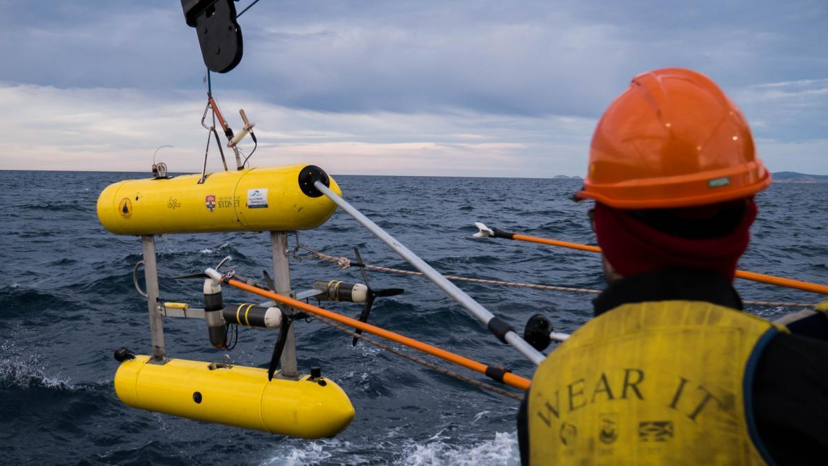 An autonomous underwater vehicle being deployed at sea