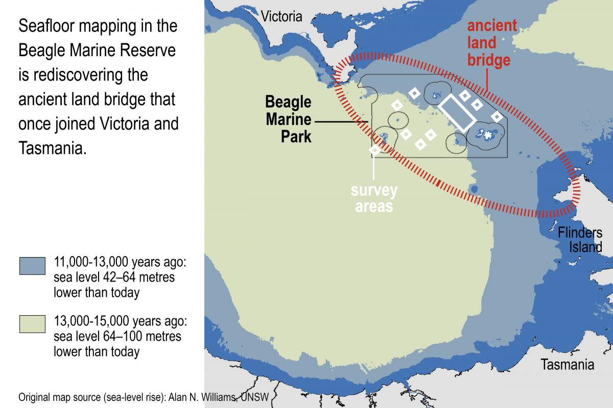 A map showing survey ares in the Beagle Marine Park and changes in sea level