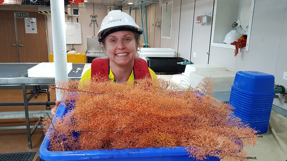 Candice Untiedt with bottlebrush gold corals