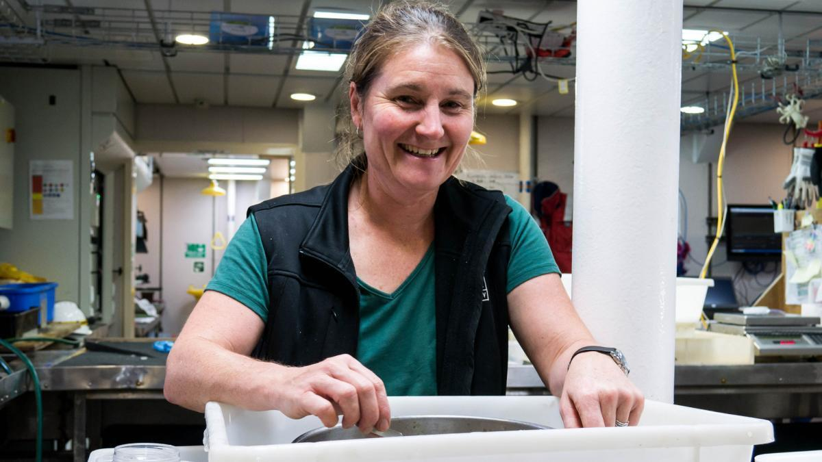 Kirrily Moore of the Tasmanian Museum and Arts Gallery sorting samples on the RV Investigator