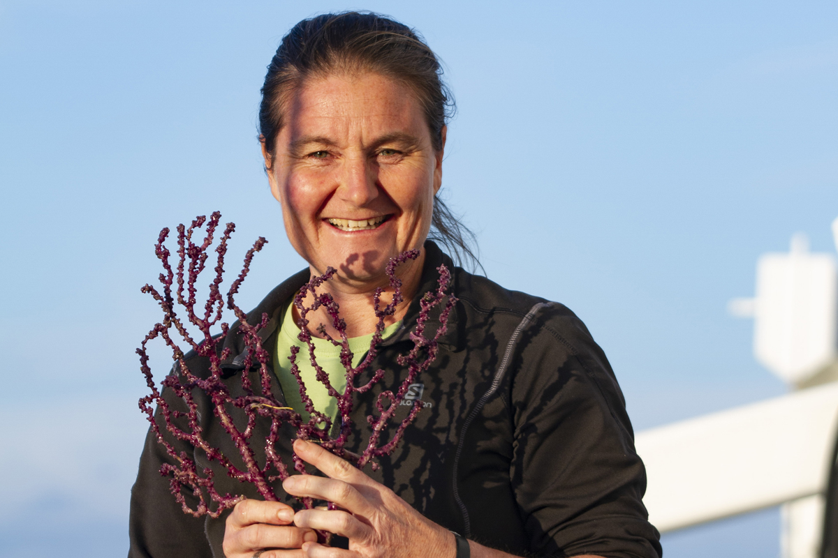 Kirrily with a fresh specimen of the purple soft coral that she had the good fortune to collect on the voyage.