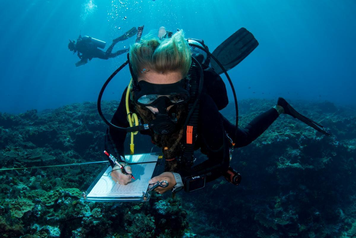 Reef Life Survey Diver Caitlin Woods