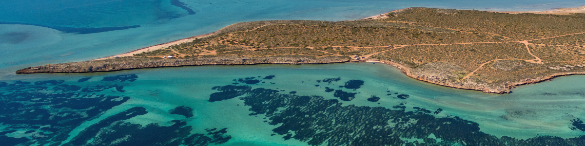 Aerial view of Shark Bay, WA