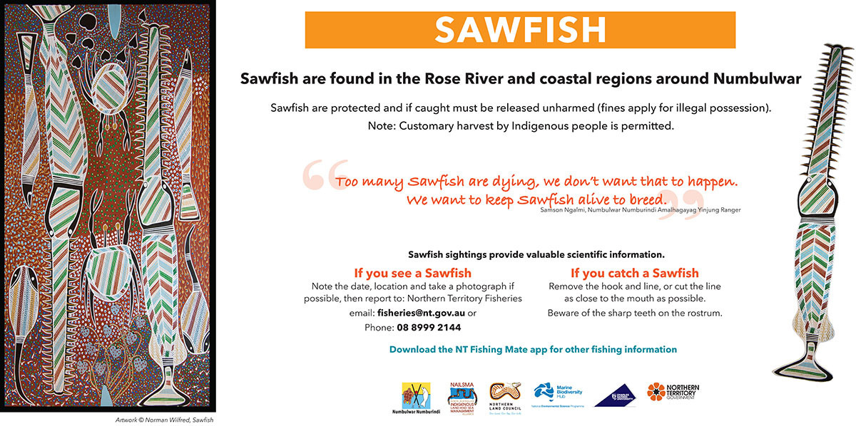 Sawfish conservation sign for Numbulwar