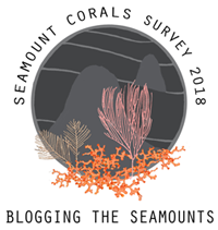 Seamounts logo with corals
