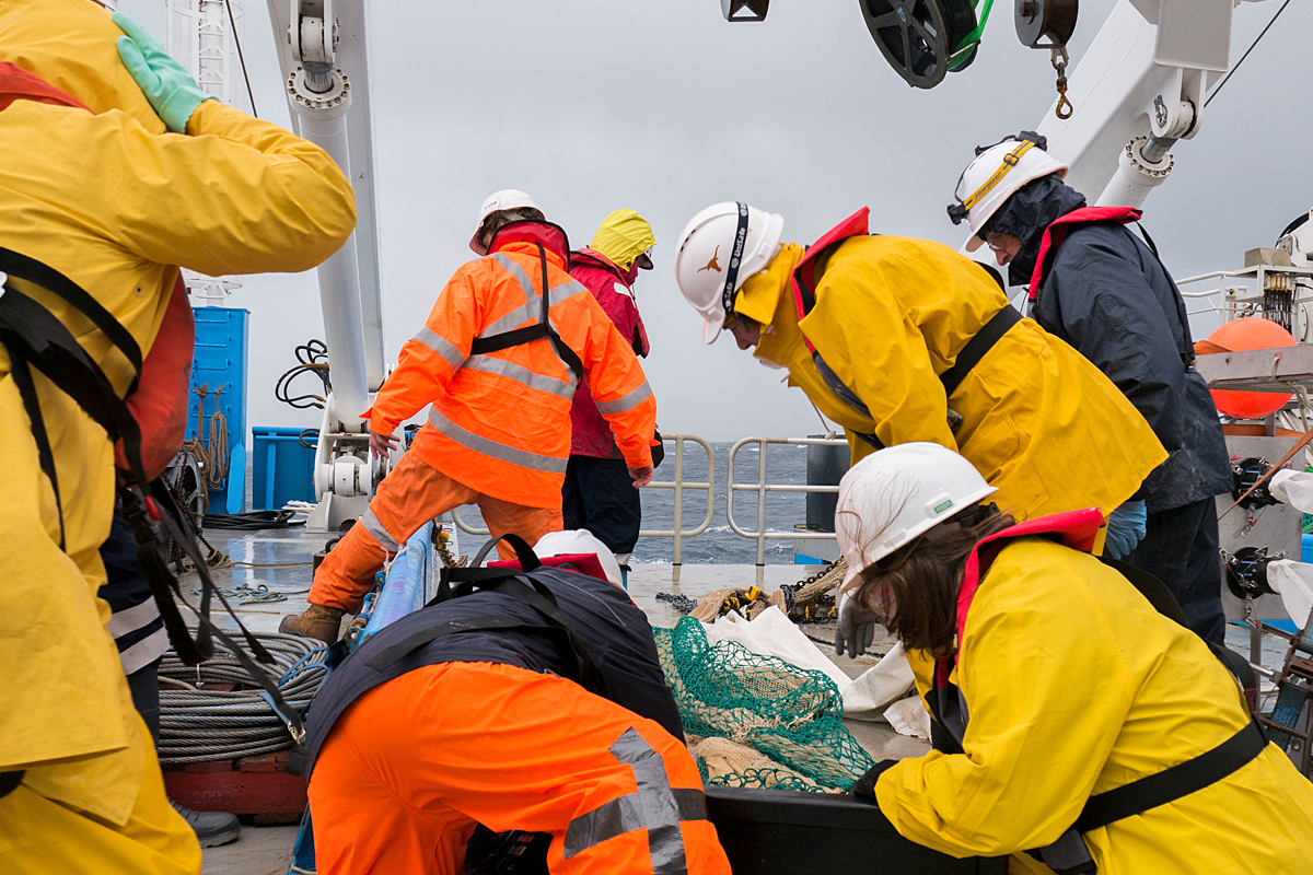 Scientists sort the catch into tubs on deck