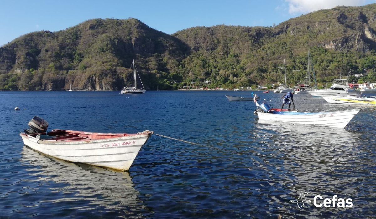 Traditional fishing vessels at St Lucia