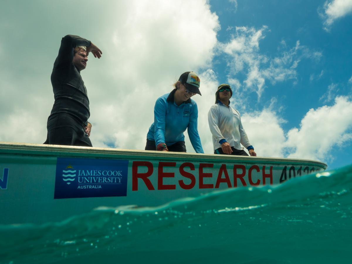 Scientists on a small boat looking for hammerhead sharks to tag.