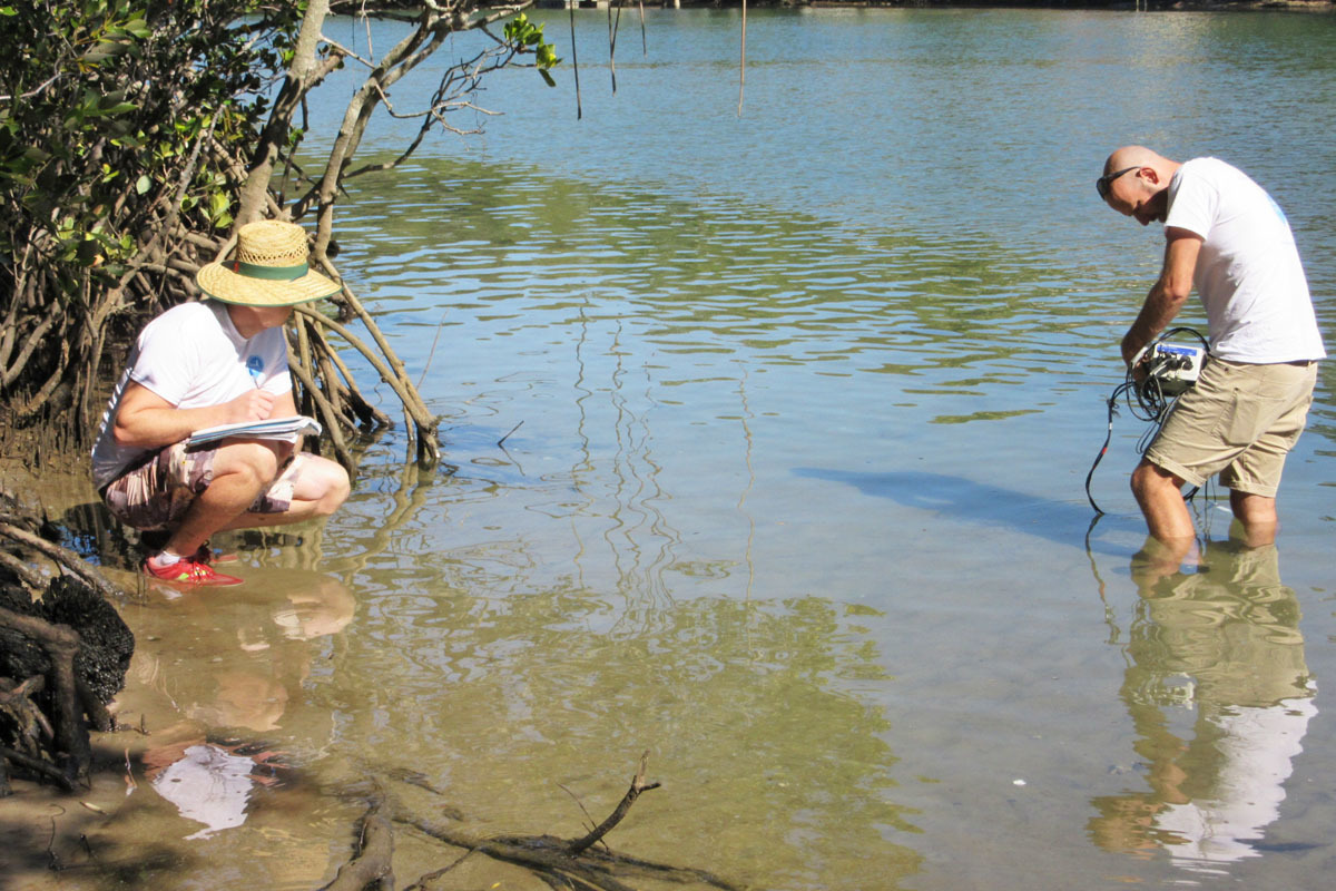 Monitoring water quality near mangroves at Elanora on the Gold Coast