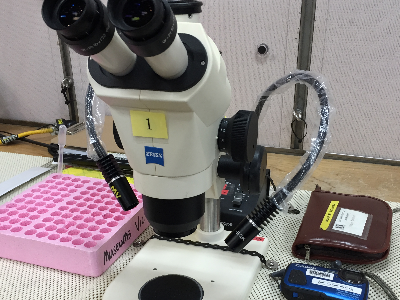 A microscope on a sticky mat in the lab