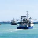Trawlers in the Northern Prawn Fishery