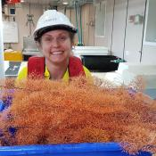 Candice Untiedt of CSIRO and gold corals.  Image CSIRO
