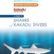A Guide to Sharks of Kakadu Rivers, Peter Kyne, CDU